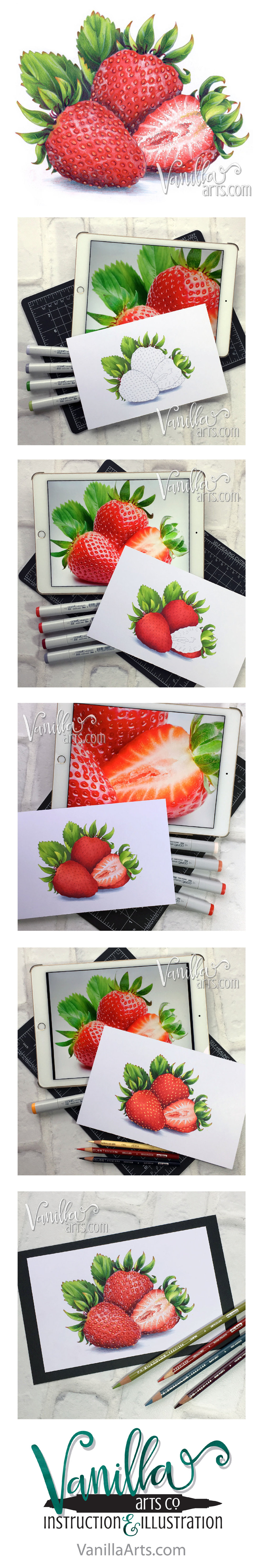 """Strawberries"" week 12 project for Marker Painting Foundations online Copic course for beginners. We start with simple blending and work our way towards realism! Begin the course anytime, work at your own pace. 