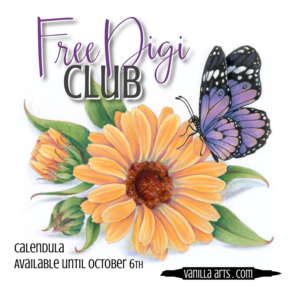 """Get your FREE copy of the """"Calendula"""" digital stamp in August 2017. Join the Free Digi Club for a new stamp every month! 