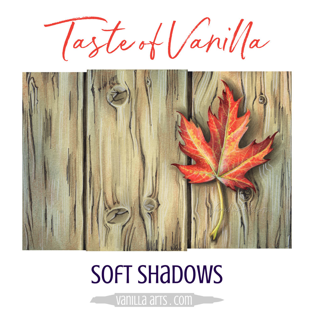 Learn how to create soft, natural cast shadows with Copic Markers, Taste of Vanilla is a free monthly art education program for adult colorers using markers or colored pencils. Subscribe at VanillaArts.com | #copic #coloredpencil #coloring #artlessons #realisticcoloring