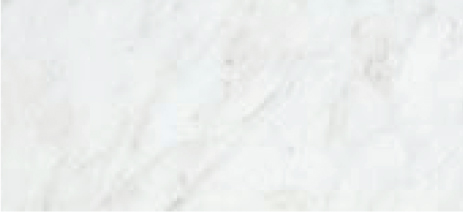 SSC-32-W STONE SLAB PENTAL CARRARA SLAB/CARRARA WHITE/POLISHED POWDER ROOM WALL ACCENT