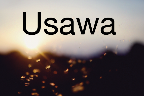 Usawa is Swahili for equality.