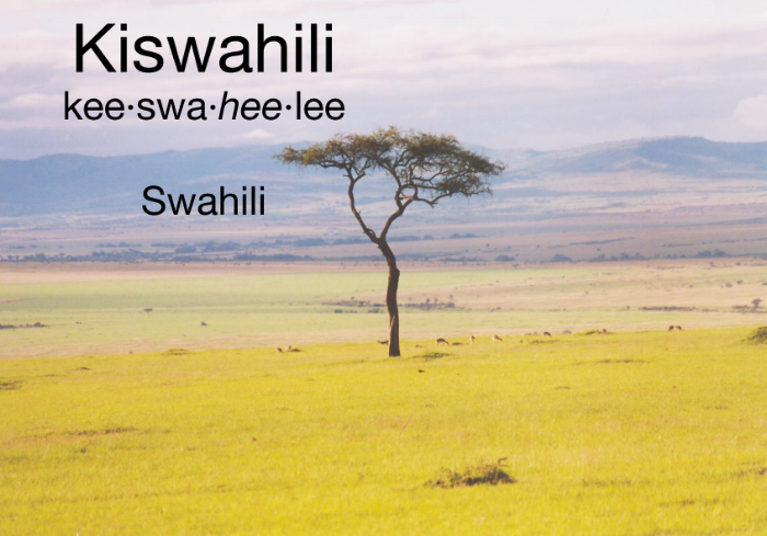 Kwaheri  is Swahili for Goodbye.