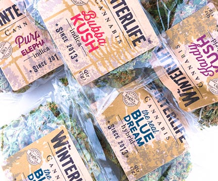 Clever names abound in the world of cannabis, but very little information is attached to them.