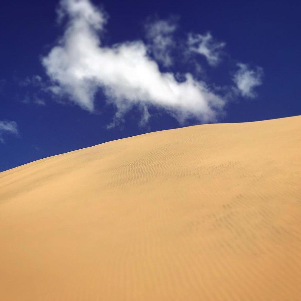New Zealand Sand Dunes