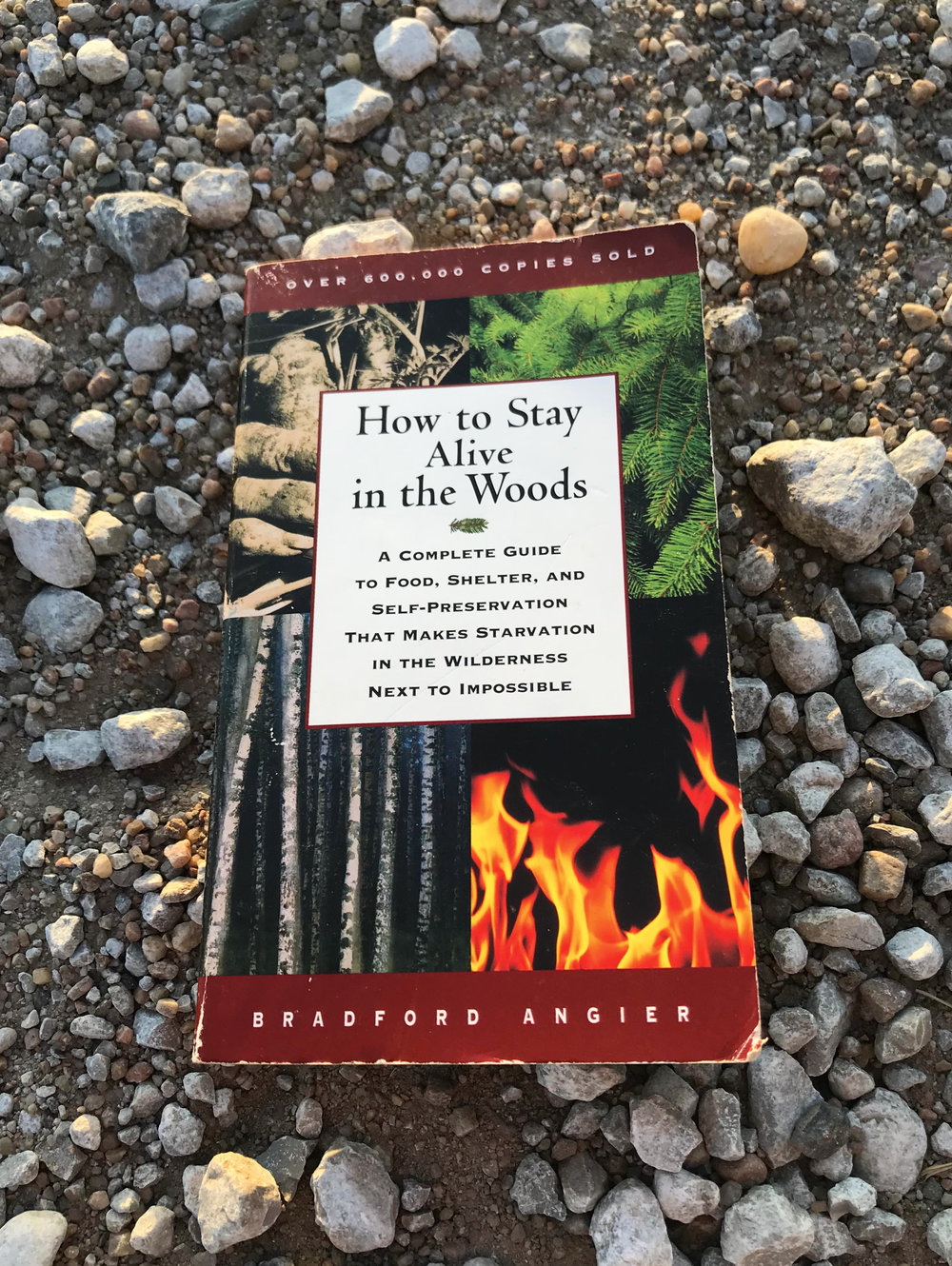 How to Stay Alive in the Woods by Bradford Angier