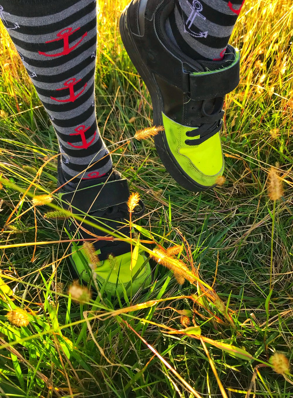 Tall nautical socks while walking is tall fall grass and sun setting on the perfect fall riding day.