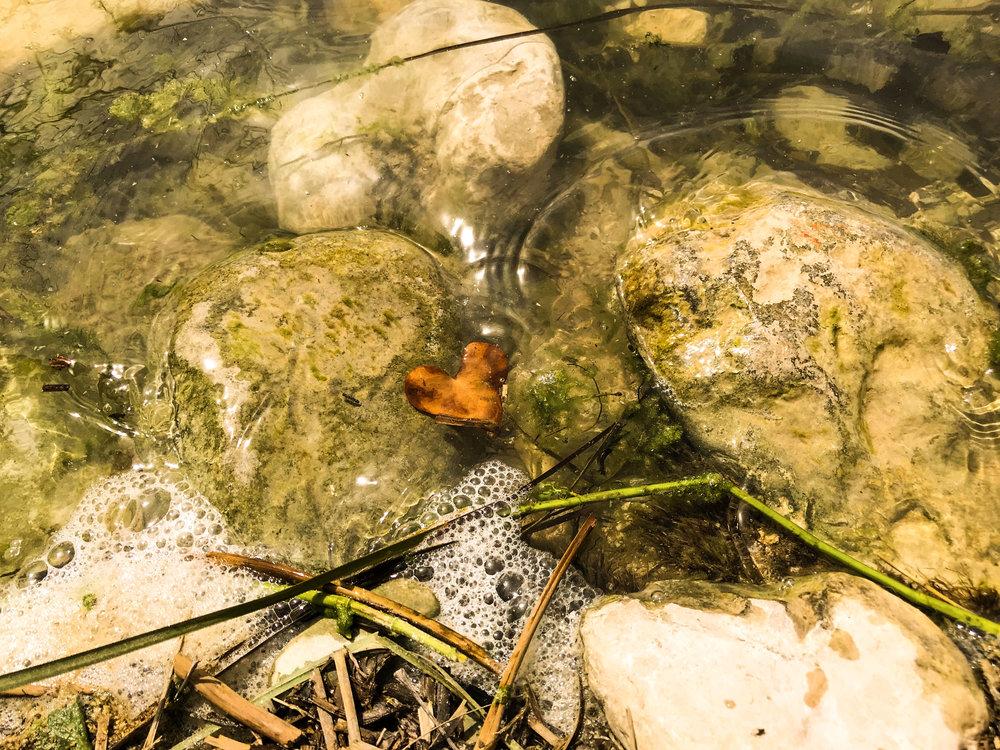 Heart floating in the Devil's River!