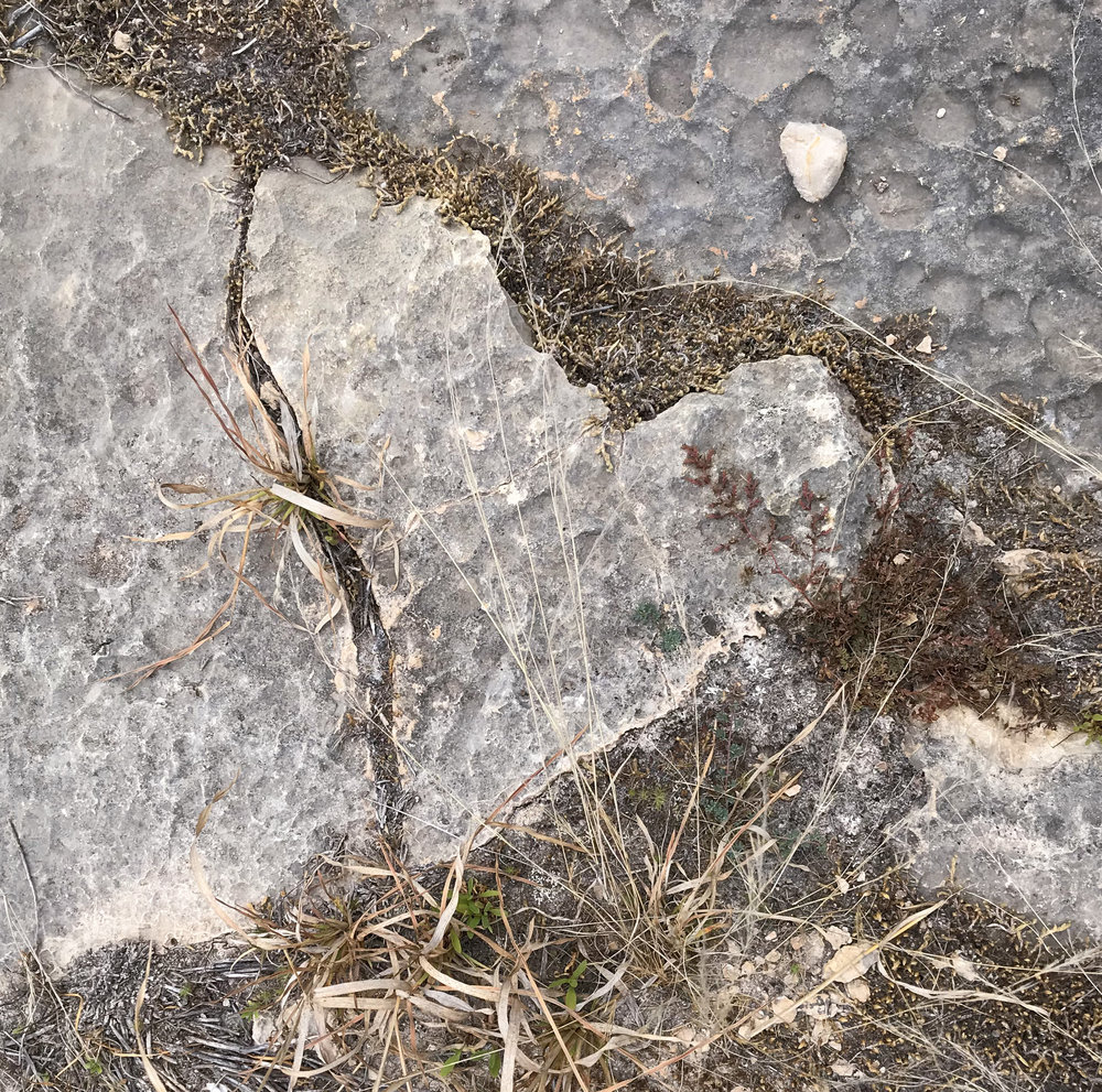 heart shaped rock on the Canyon Rim Trail
