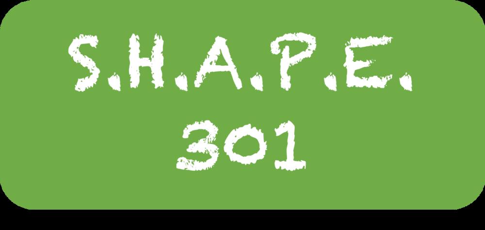 SHAPE 301.png