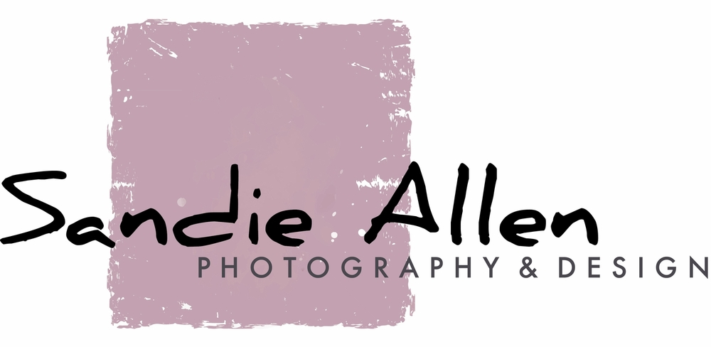 Sandie Allen    Photography • Design