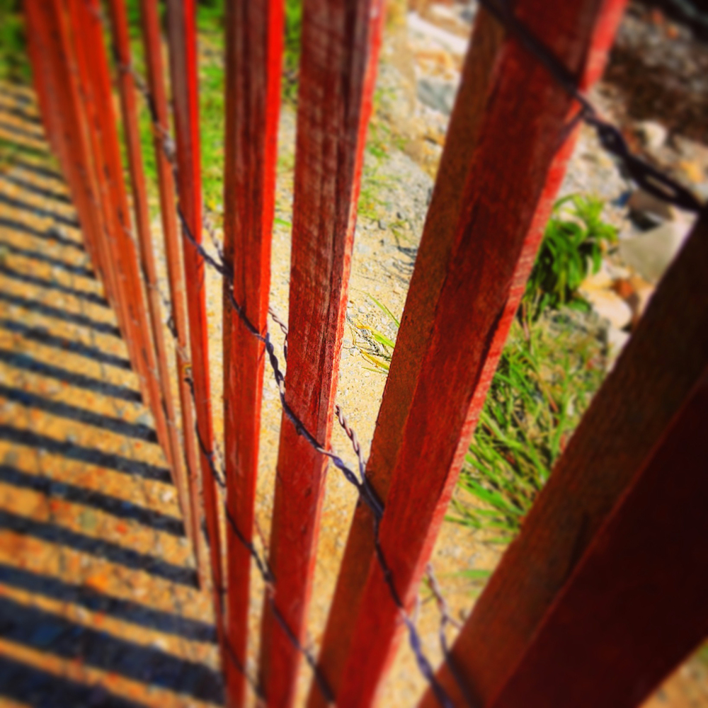 Red Fence Point Judith Rhode Island