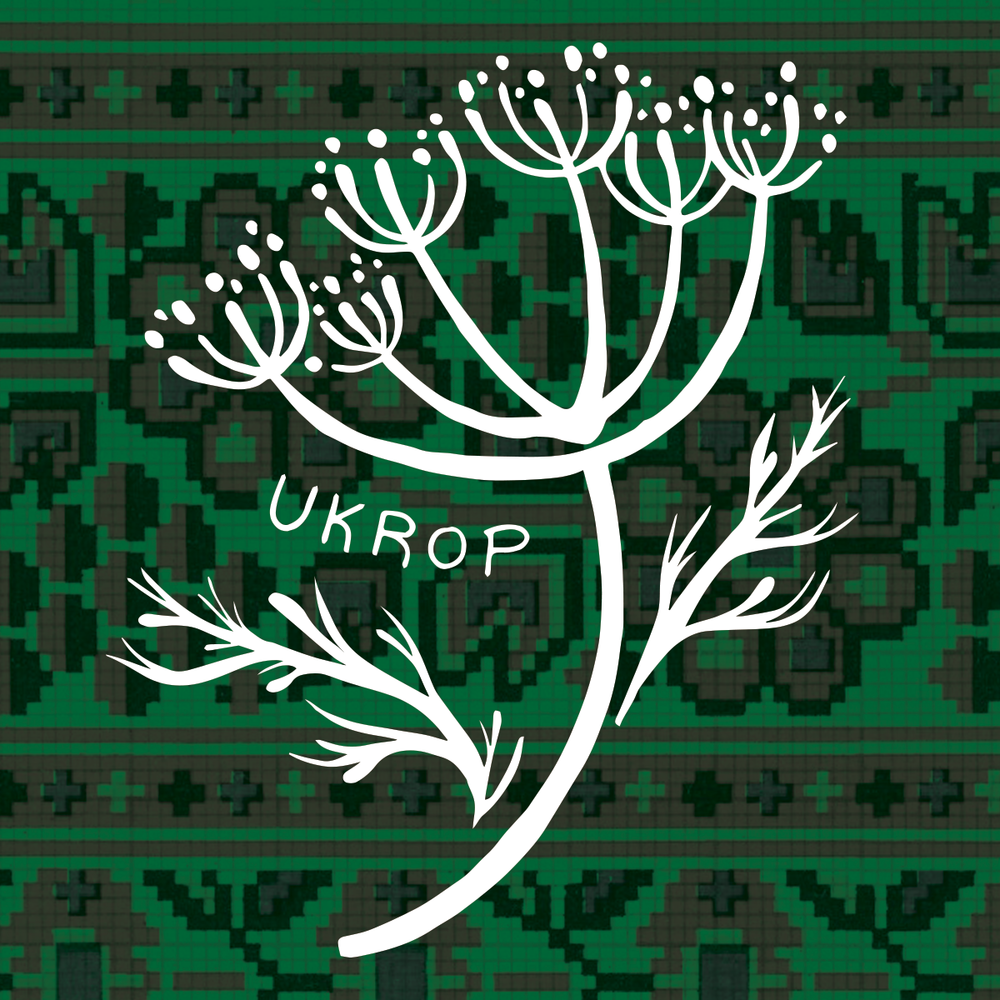 Ukrop Introduction To Ukrainian Embroidery Workshop Kosa Kolektiv