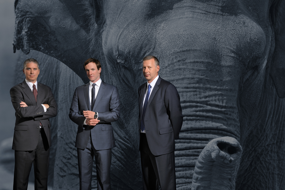 I got to spend an afternoon doing a portrait of an elephant - she was a very willing subject - the guys do serious Big Data