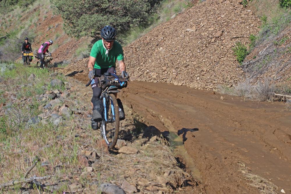 OregonOutback13.jpg