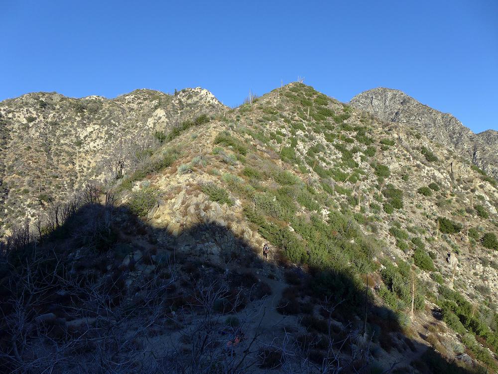 5 ridge line.JPG