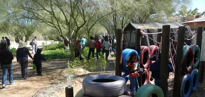 jardin-comunitario-urbano-curso-jardineria-proyecto-christy-walton.jpg