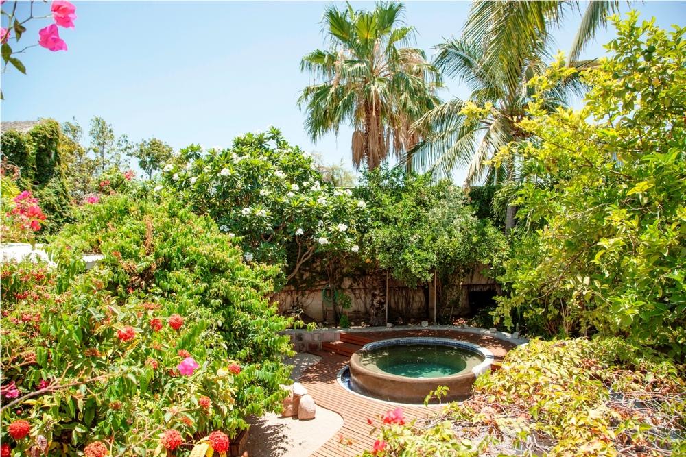 casa-salamandra-pool-garden-la-paz-mexico.jpg