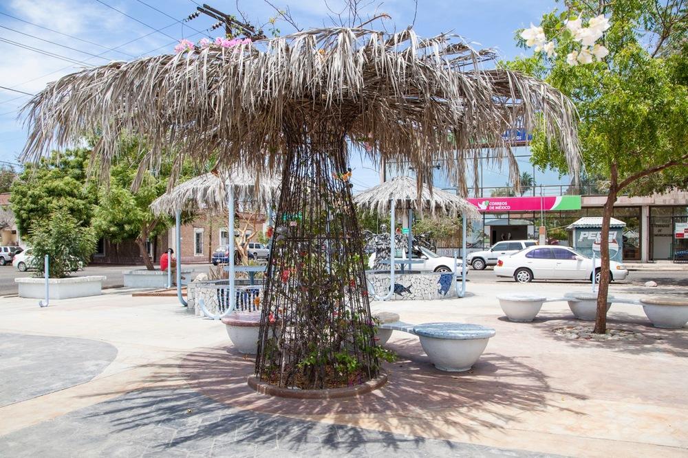 creation-pocket-park-tenaja-holdings-la-paz-mexico.jpg