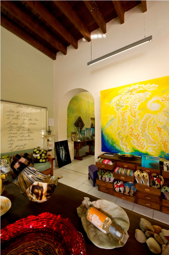 art-painting-interior-decoration-la-paz-baja-california-sur.jpg