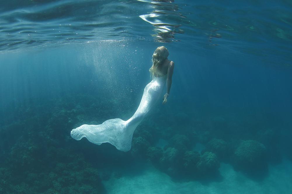 Maui-Underwater-Photography-5.jpg