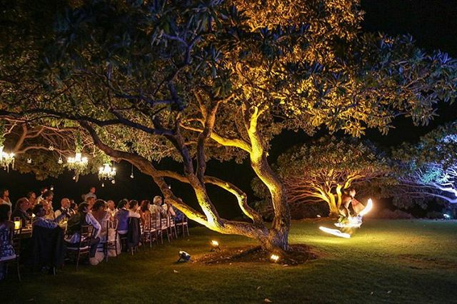 The guests at Mellissa and Jen's wedding were treated to an amazing fire display while enjoying dinner under candlelight.