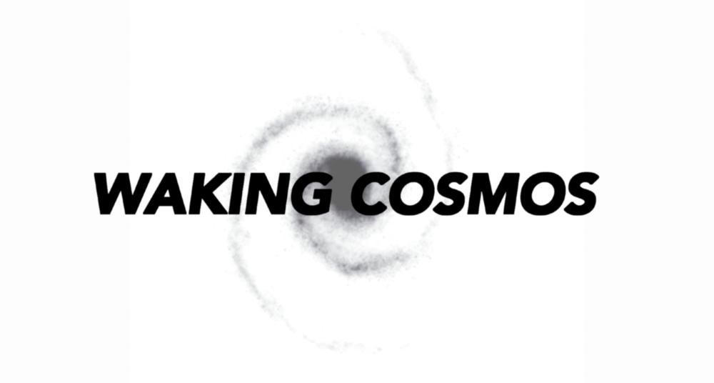 Waking Cosmos