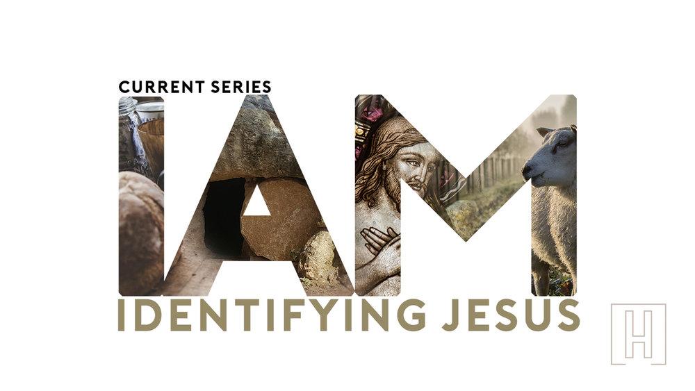 IAM Series web.jpg