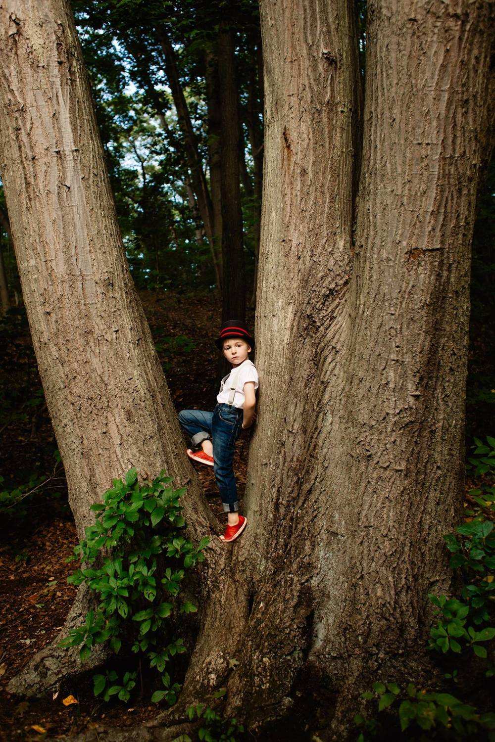 boy in a tree | Jennifer Tippett Photography