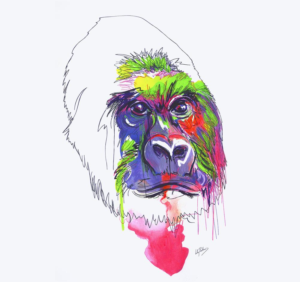 gorilla-drawing.jpg