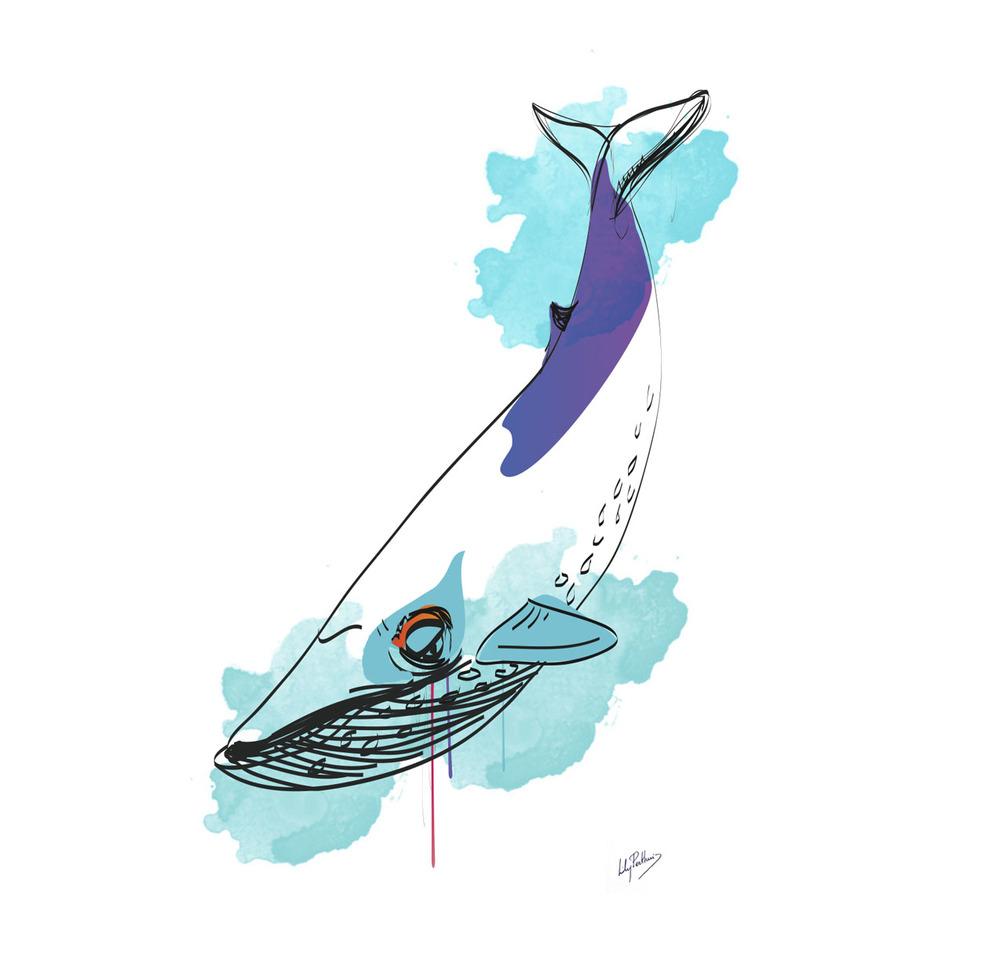 bluewhale-drawing.jpg