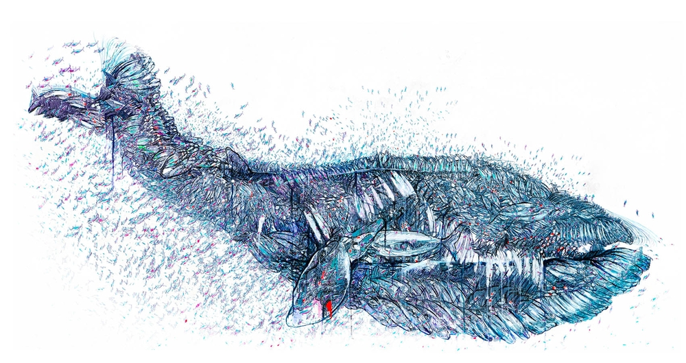 whale-artwork.jpg