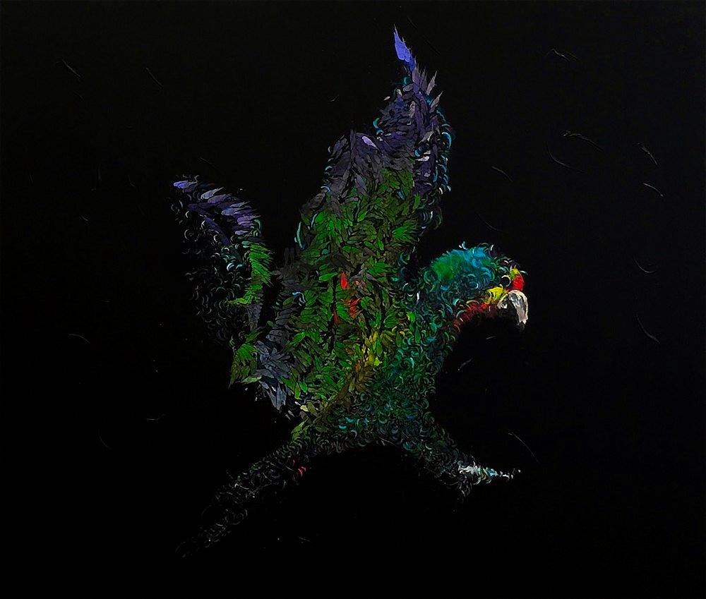 Swift Parrot Endcount