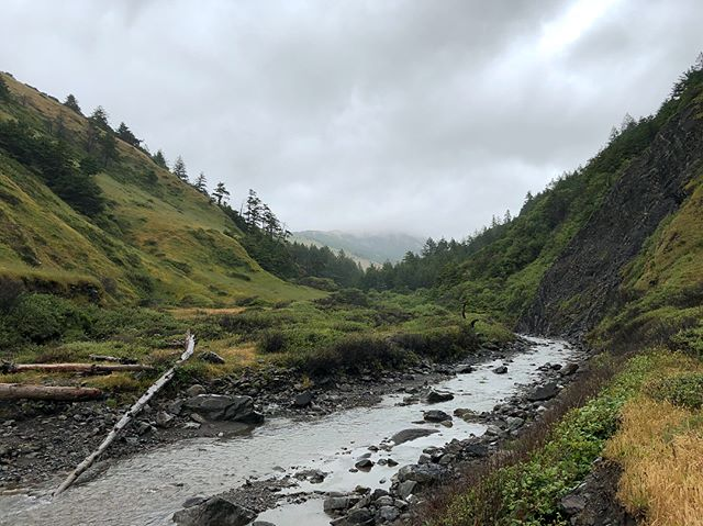 Lost Coast Trail! 3 day, 25 mile hike breathing ocean air along the stunning coast of NorCal, camping next to freshwater creeks, sea creatures and forest mammals. Forgot what it's like to fall asleep to waves hitting pebbles and wake up with the sun.