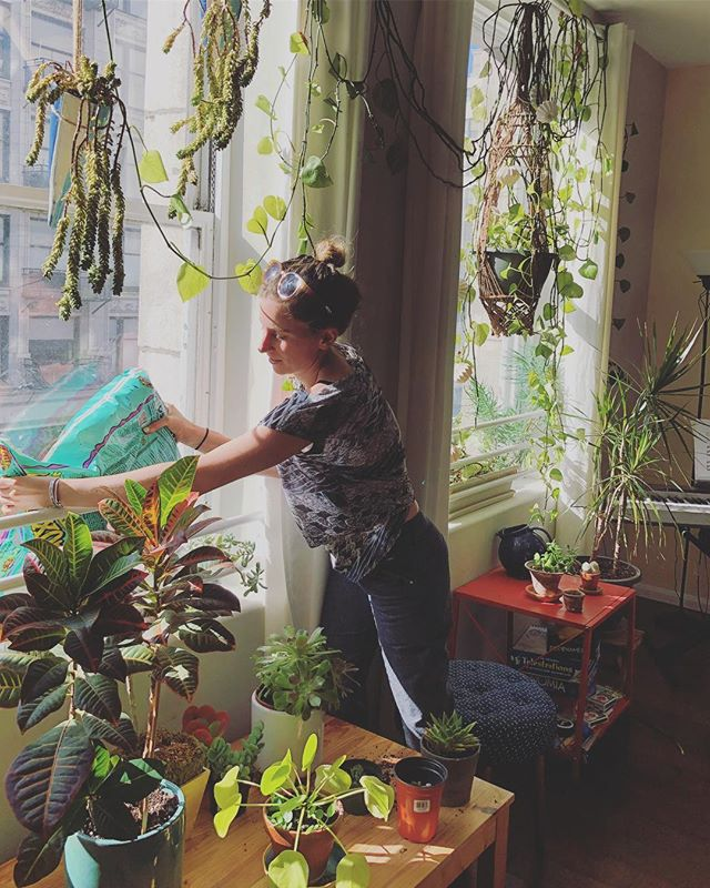 Lilly tending our thriving plant family 💚🌞