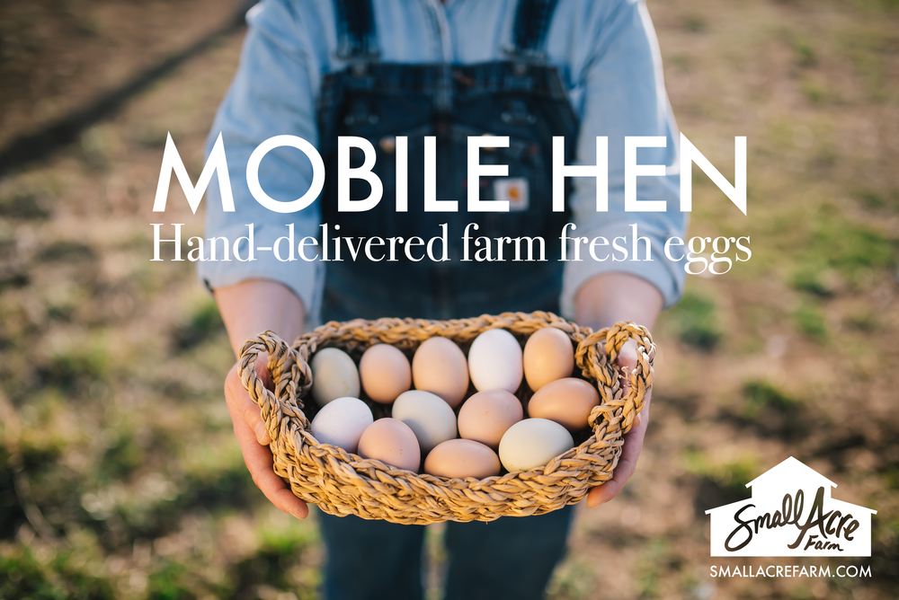 Get your farm fresh eggs delivered to your business in Fort Collins, Colorado by Small Acre Farm