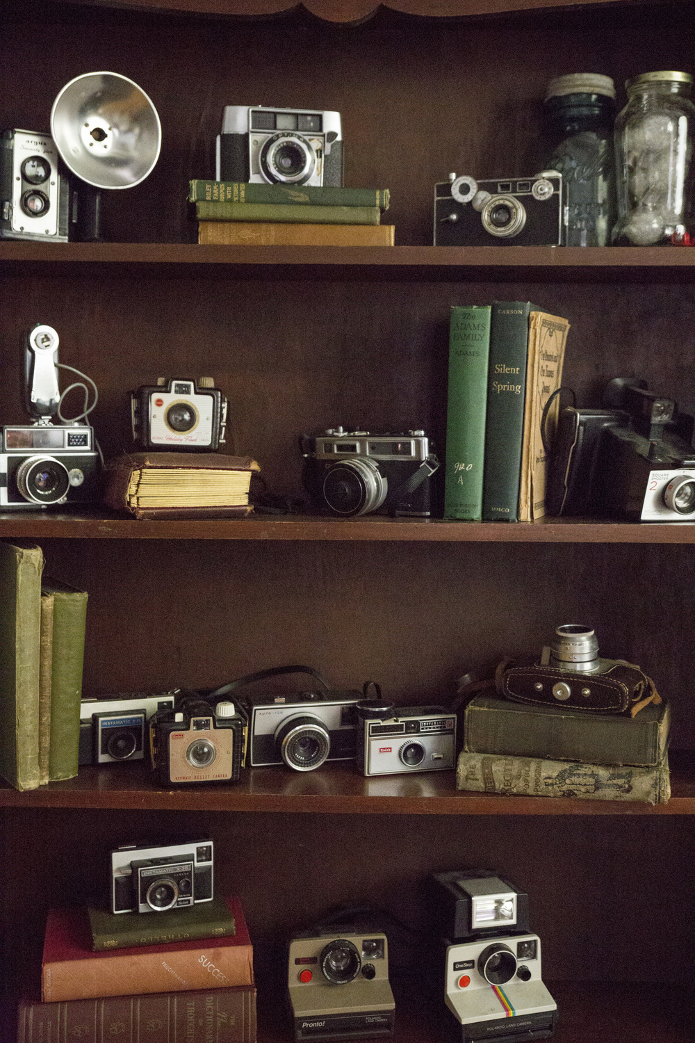 Any collection can become decor. We paired the cameras with books to help give more heigth and add interest.