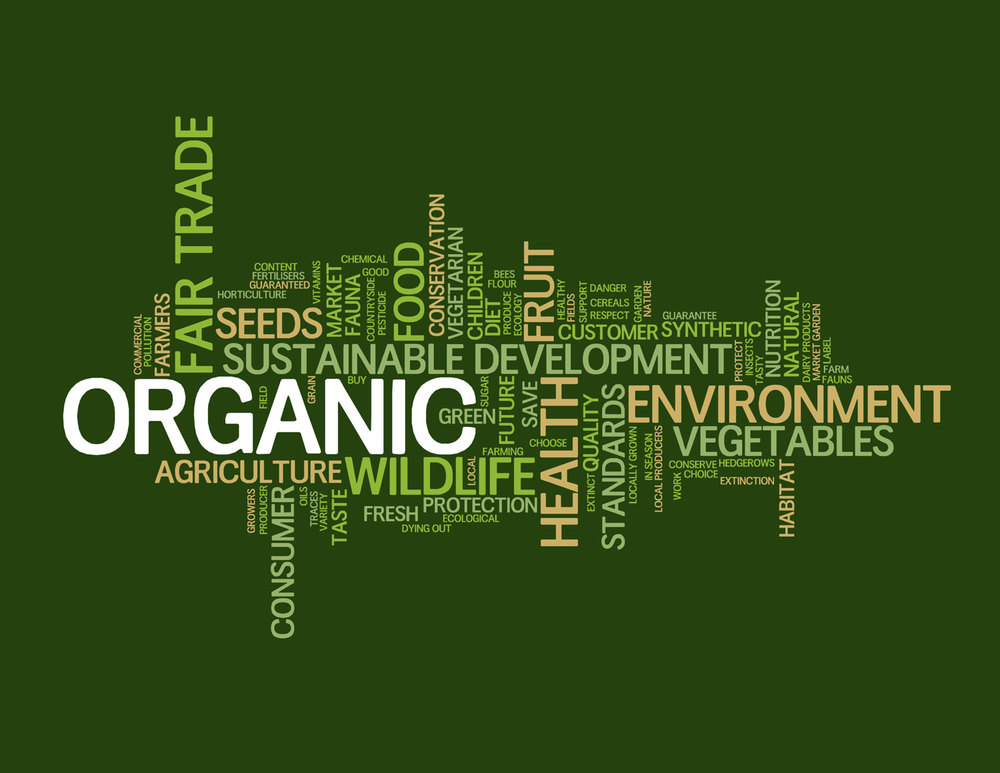 Sustainable-Food-Words.jpg