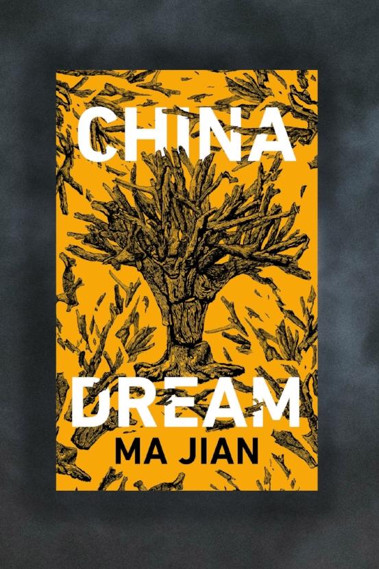May 2019 | China Dream by Ma Jian