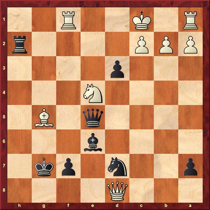 Position after 29.Ne4