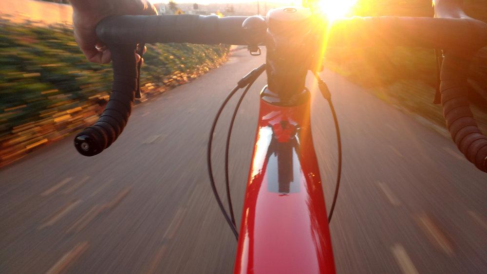Focus Rennräder, Focus Cyclocross, Focus Gravel, Focus E-Rennrad