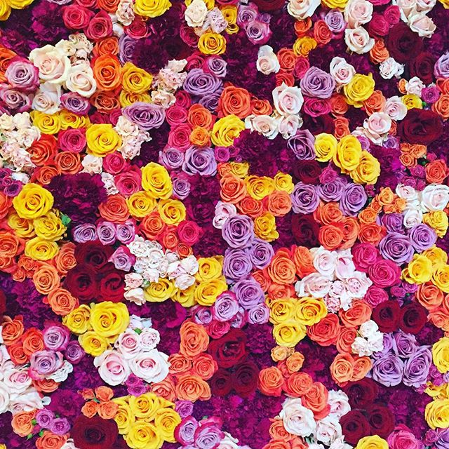 •• epic flower wall •• #jeannegetsmitched #wedding #flowers #flowerporn