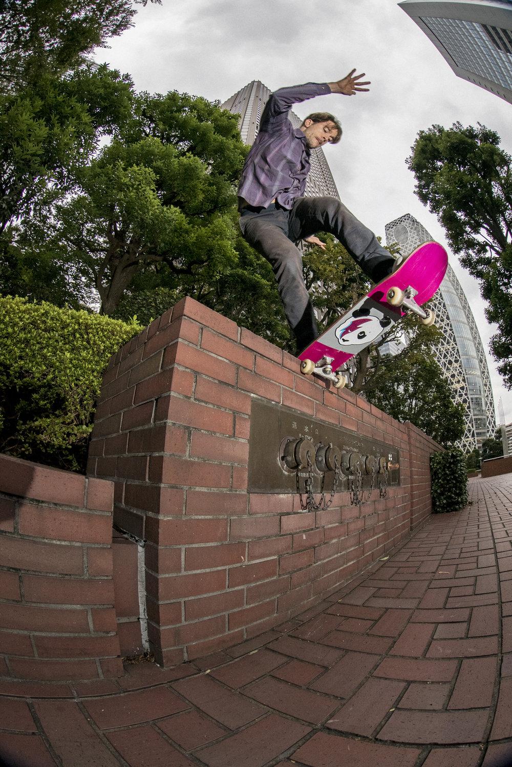 Digital Patrik Wallner 2016 Tokyo Nestor Bs Tail Shove.jpg