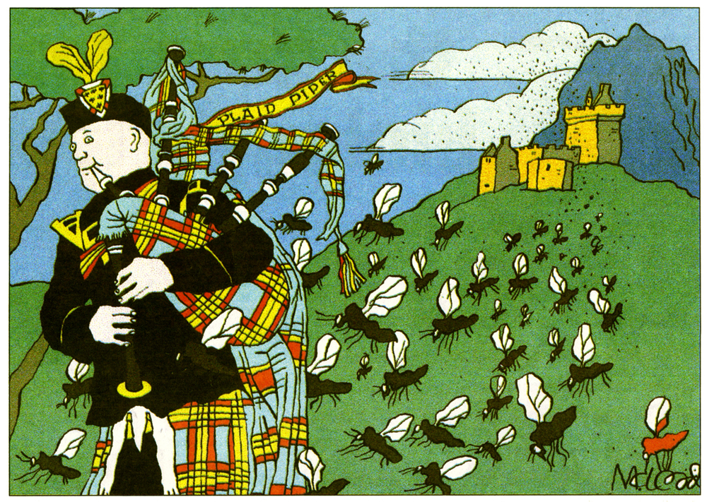 The Plaid Piper (& Midges)  The Herald