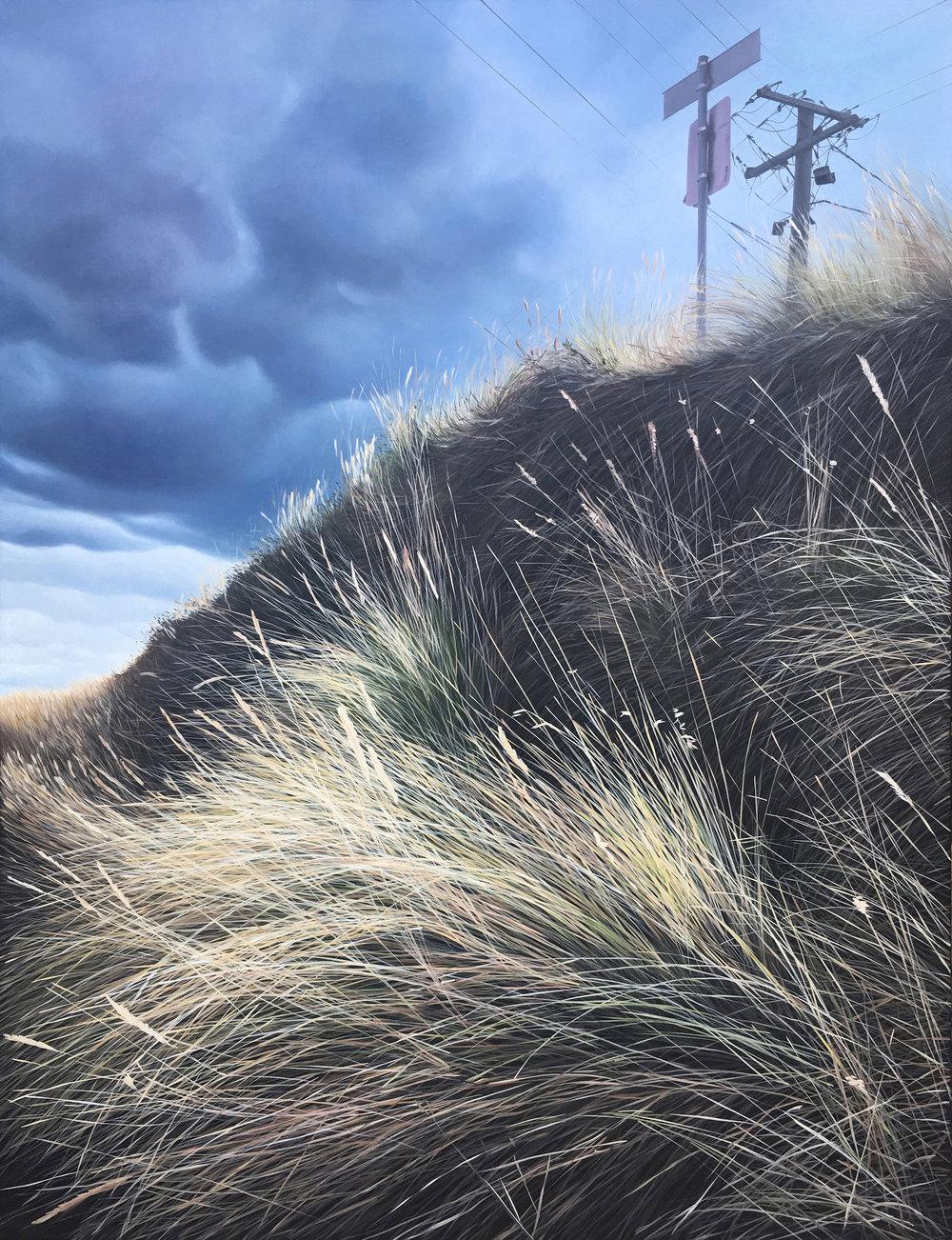 - View Of A Suburban StreetFinalist 2018 John Leslie Art Prize