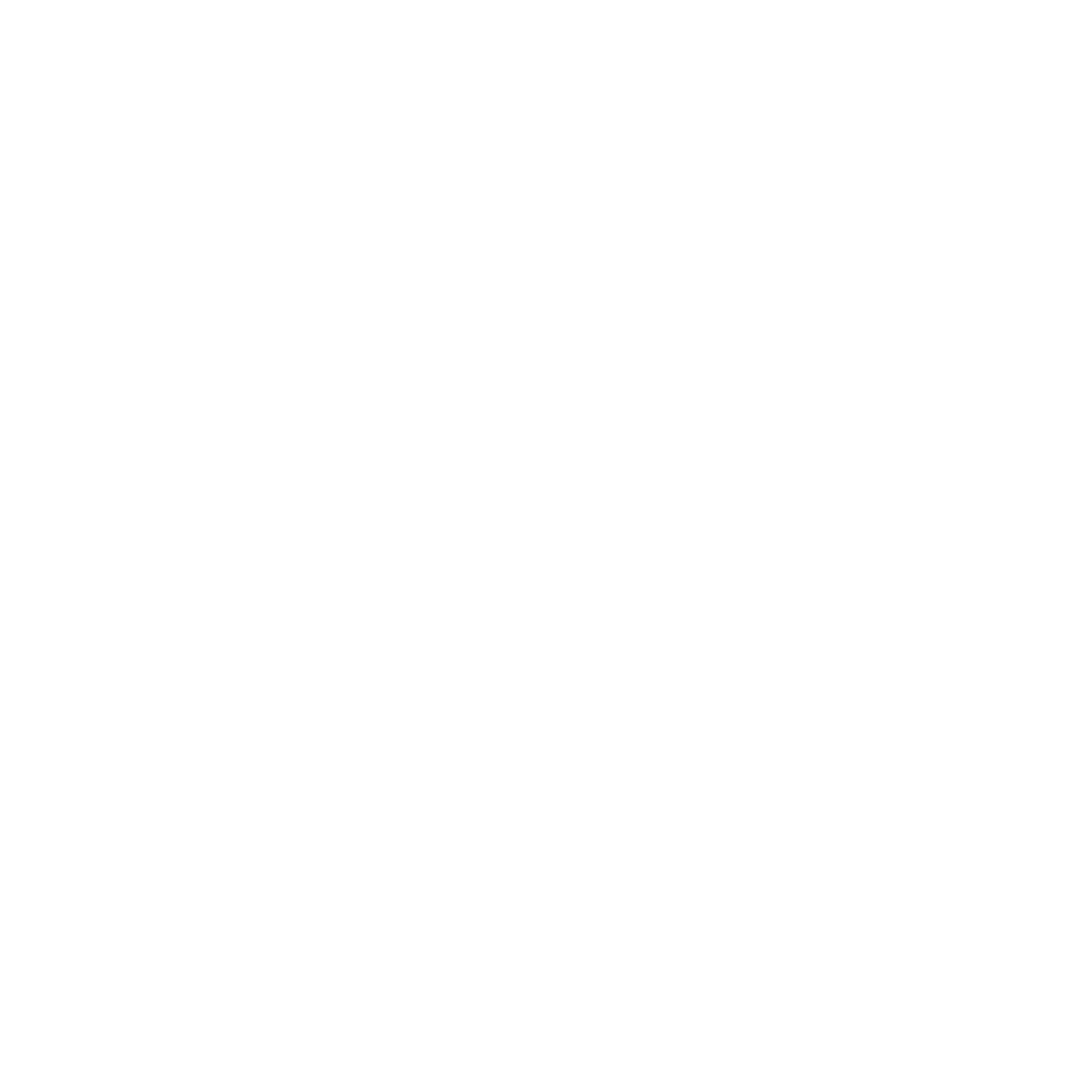 ANGEL KING