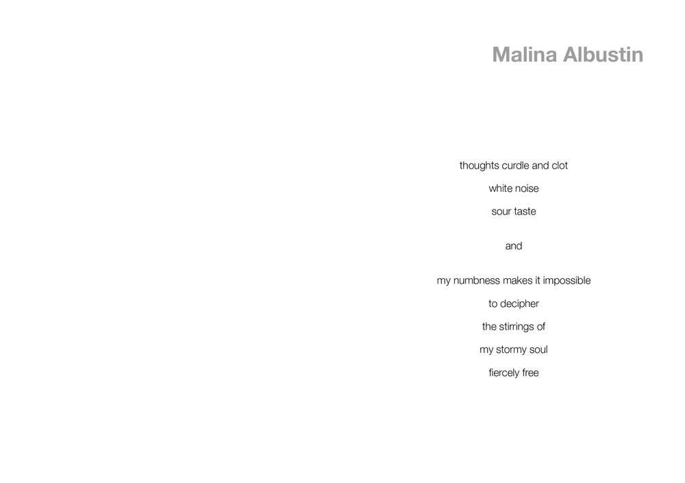 BA3 BOOK Malina final210.jpg