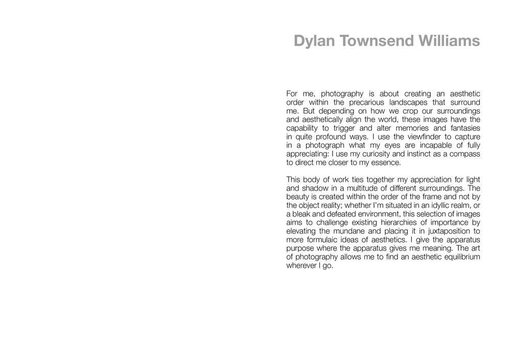 DYLAN10.jpg