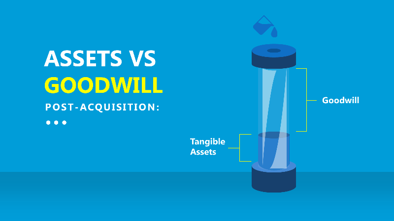 Assets vs Goodwill