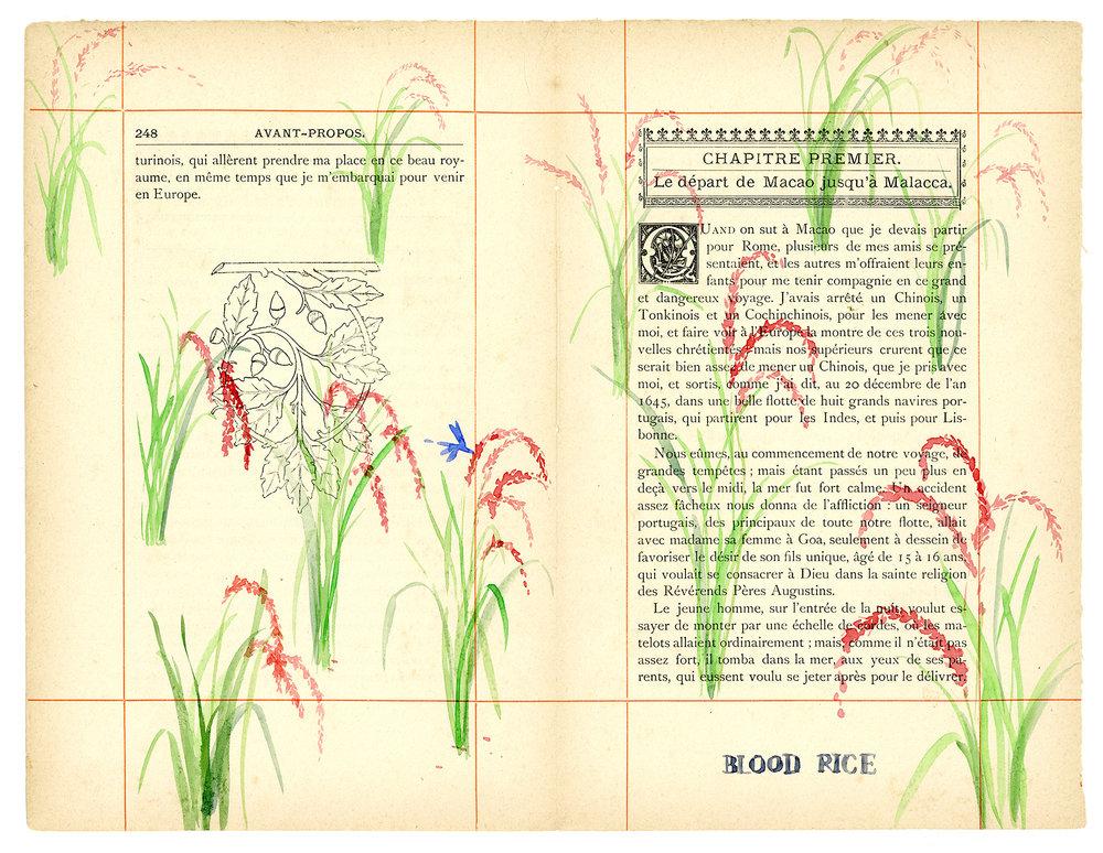 Voyage de Rhodes No.28  23.5 x 31cm