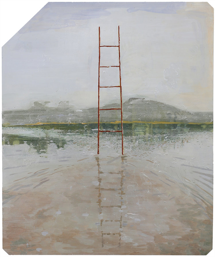 The Ladder   2017  Oil on x-ray film backing  Framed: 53 x 45cm each (irregular); unique, 43 x 35.3cm (without frame)